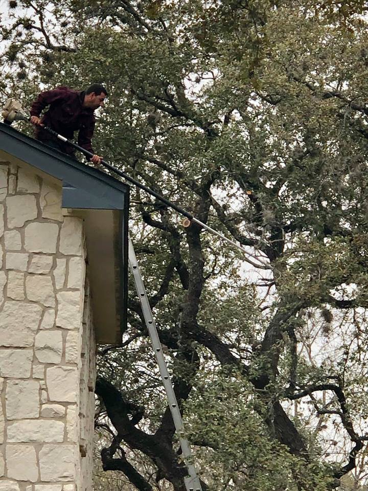 A.L. Tree Services