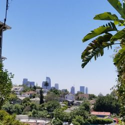 Photo Of Laveta Terrace Stairs   Los Angeles, CA, United States. The View
