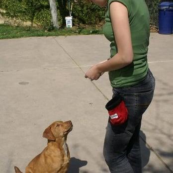 Woof Dog Training San Diego Ca