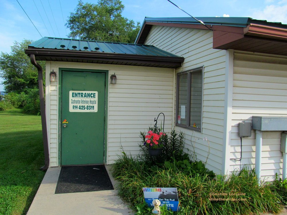 Cochranton Veterinary Hospital: 33124 US Hwy 322, Cochranton, PA