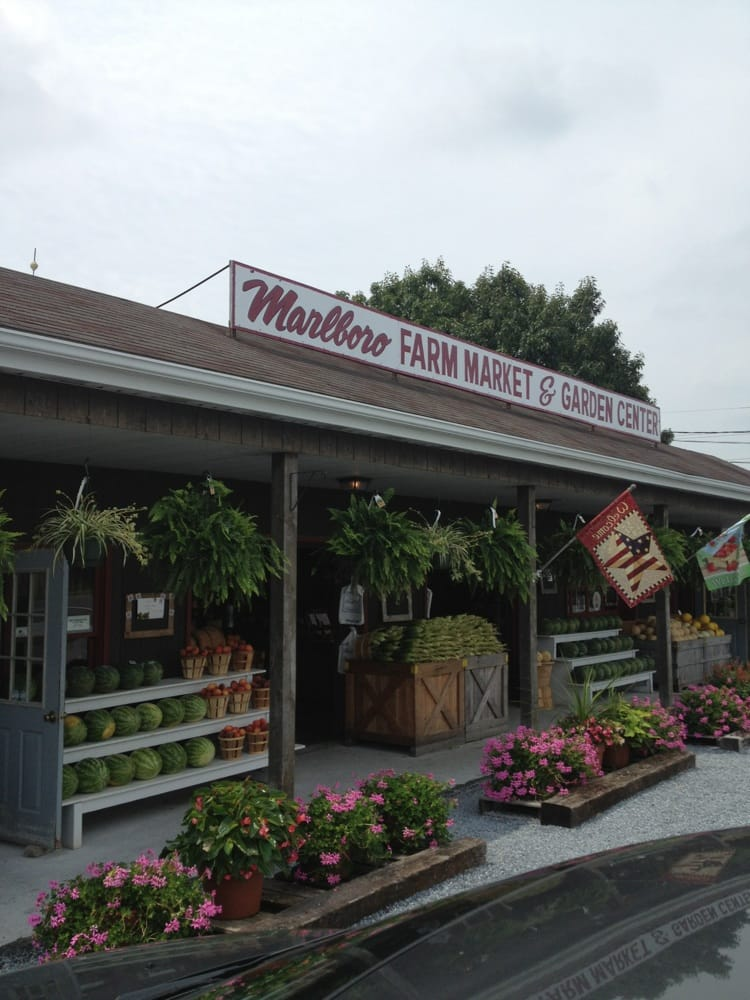 Marlboro Farm Market: 601 Quinton Marboro Road Rt 49, Bridgeton, NJ