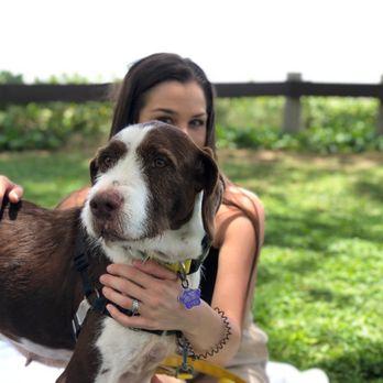 Maui Humane Society - 1350 Mehameha Lp, Puunene, HI - 2019