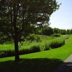 Danehy Park Cambridge Ma Yelp