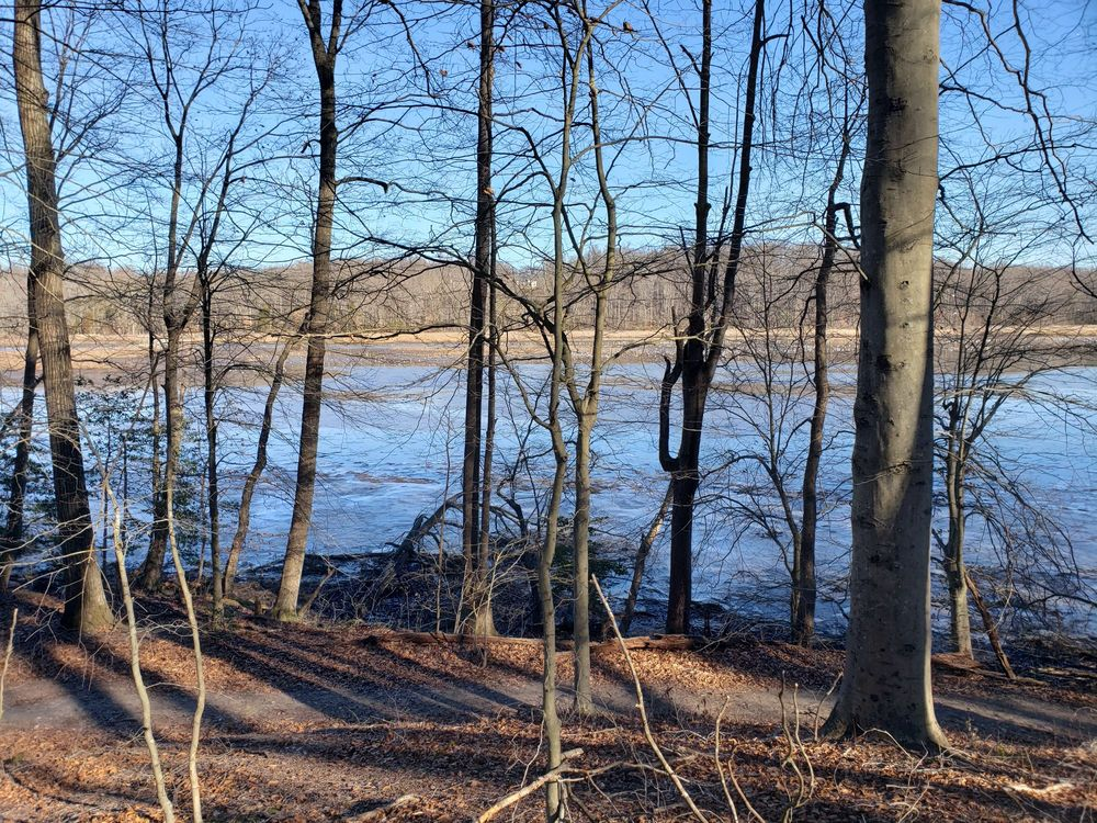Crow's Nest Natural Area Preserve: 2500 Brooke Rd, Stafford, VA