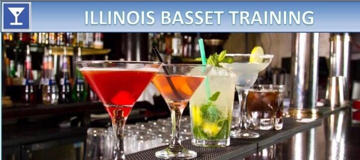 illinois basset training - bartending schools - 41 n ott ave, glen