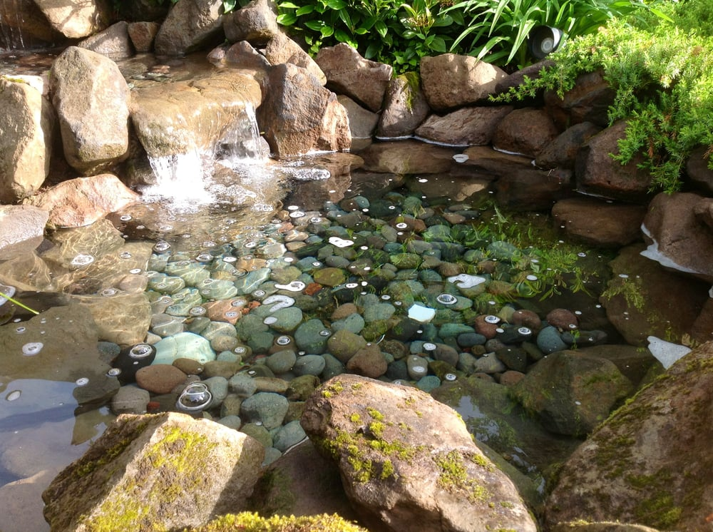 Pond Cleaning Estimates Are Free Yelp