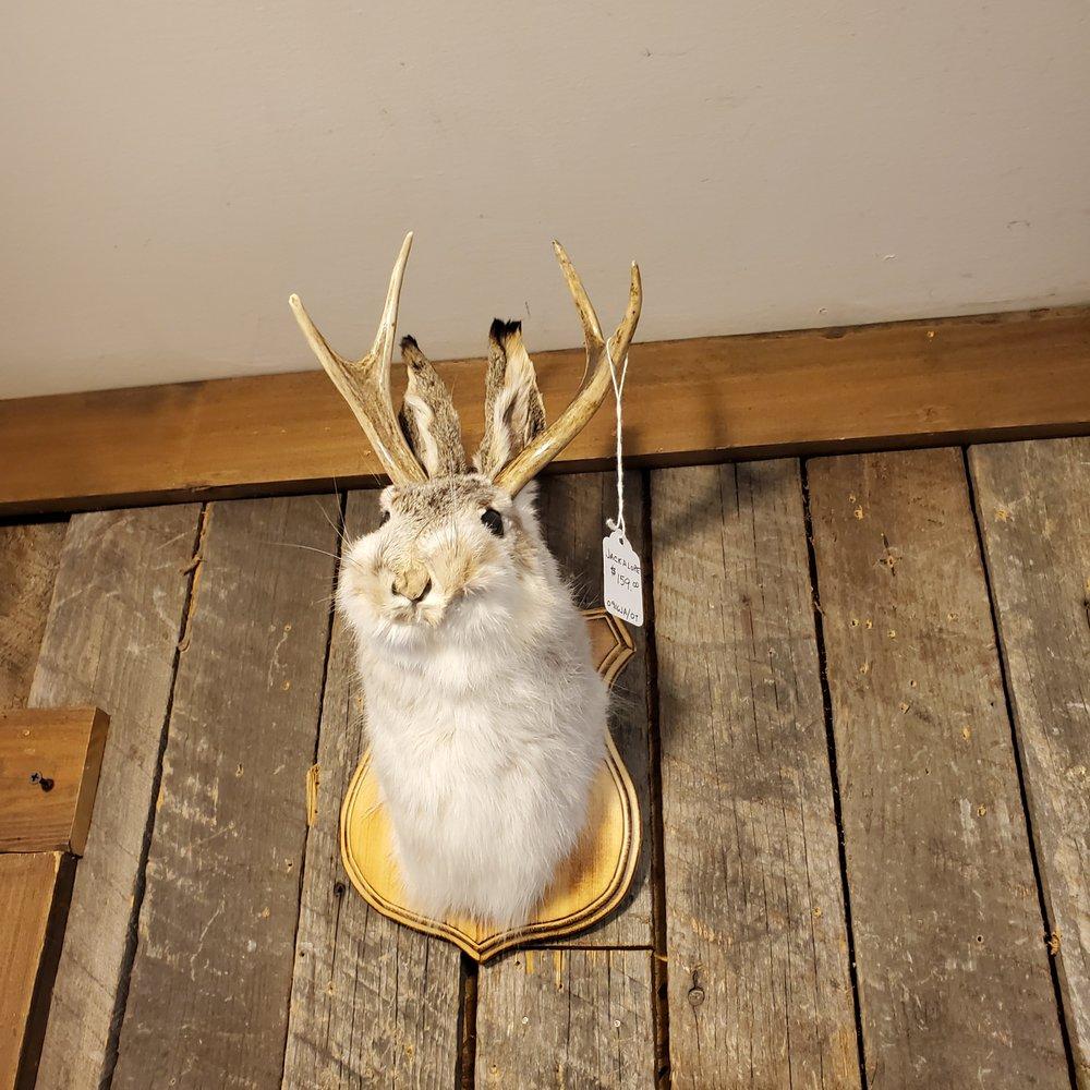 Montana Fur Trading Company: 9560 Hwy 2 E, Martin City, MT