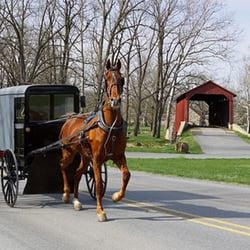 The Amish Craftsman 19 s Furniture Stores 5555