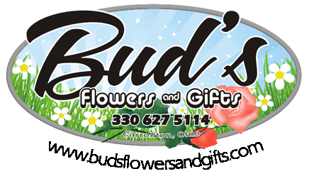Bud's Flowers And Gifts: 100 N Lisbon St, Carrollton, OH