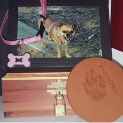 Cal pet crematory 71 photos 141 reviews pet cremation services photo of cal pet crematory sun valley ca united states my lil solutioingenieria Choice Image