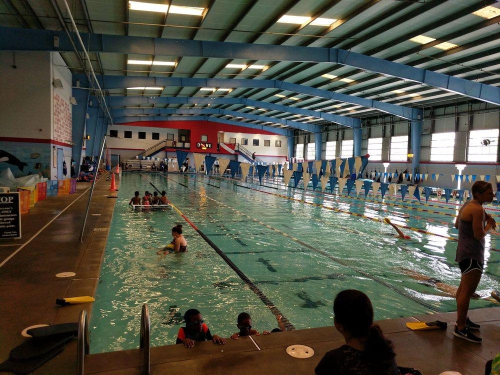 swimatlanta pool management pool hot tub service 4850 sugarloaf pkwy lawrenceville ga