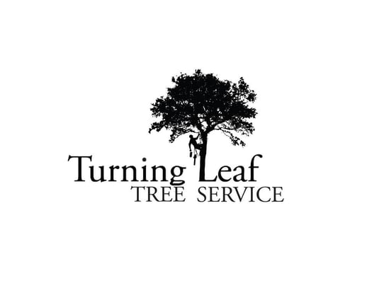 Photo For Turning Leaf Tree Service