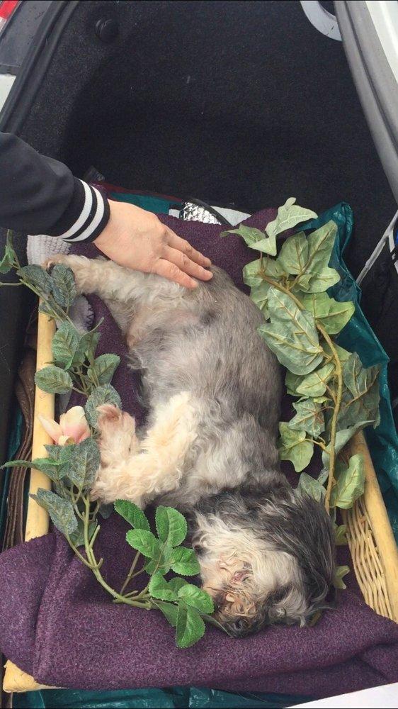 Harthaven Pet Cremation Services: 2518 E Tudor Rd, Anchorage, AK