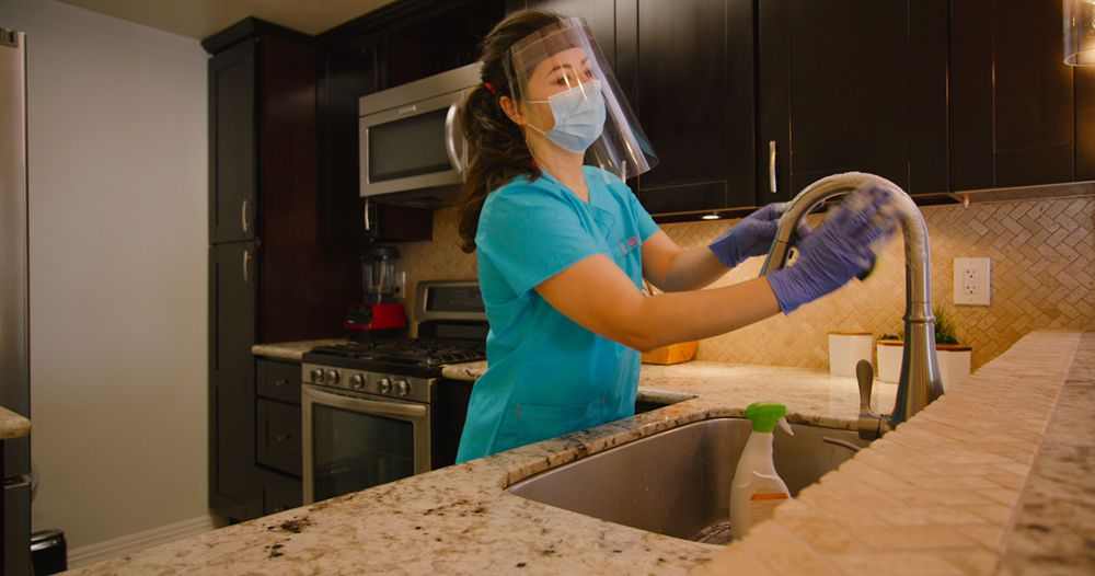Leaf Organic Cleaning Services: Bellevue, WA