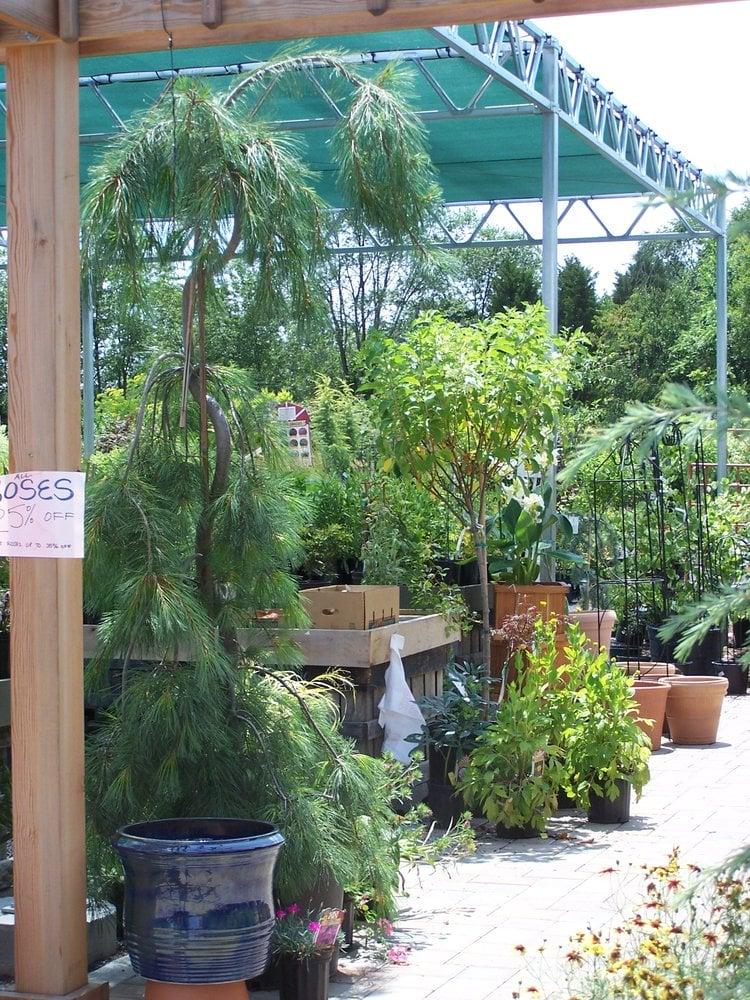 Natural Art Garden Center: 27358 Old Valley Pike, Toms Brook, VA