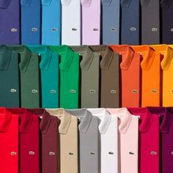 279b526ddd8bcc Lacoste Boutique - Men s Clothing - 575 Madison Ave