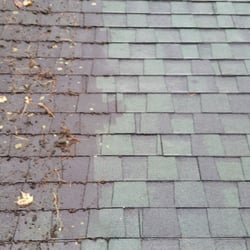 Photo Of Superior Roof Cleaning   Belchertown, MA, United States. Moss,  Algae