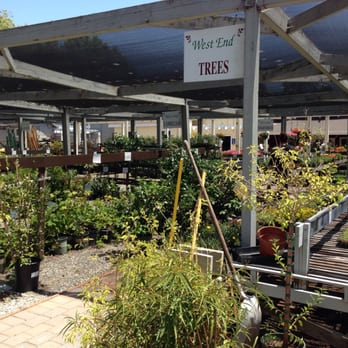 Photo Of West End Nursery San Rafael Ca United States