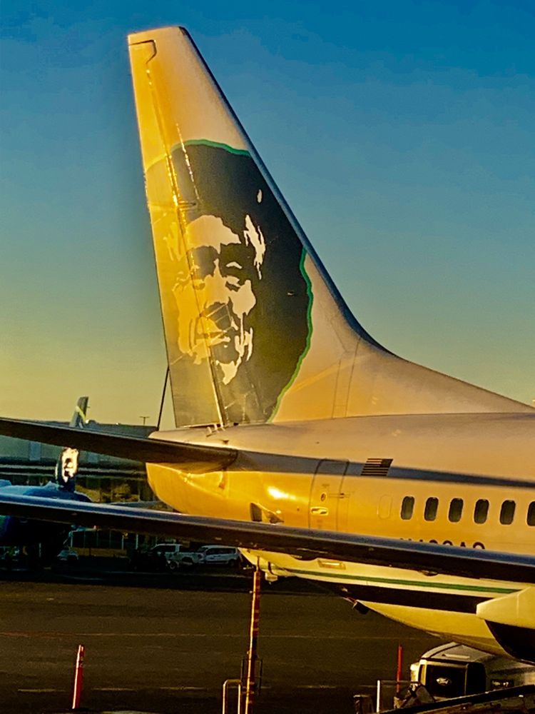 Alaska Airlines - 621 Photos & 1244 Reviews - Airlines