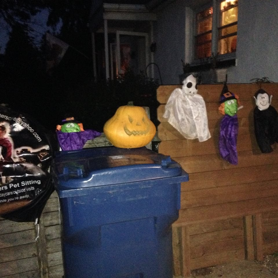 Terry Lynn's Critters: 108 Old Kennett Rd, Kennett Square, PA