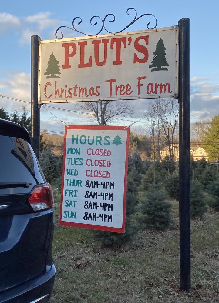 Plut's Christmas Tree Farm: 220 Flocktown Rd, Washington Township, NJ