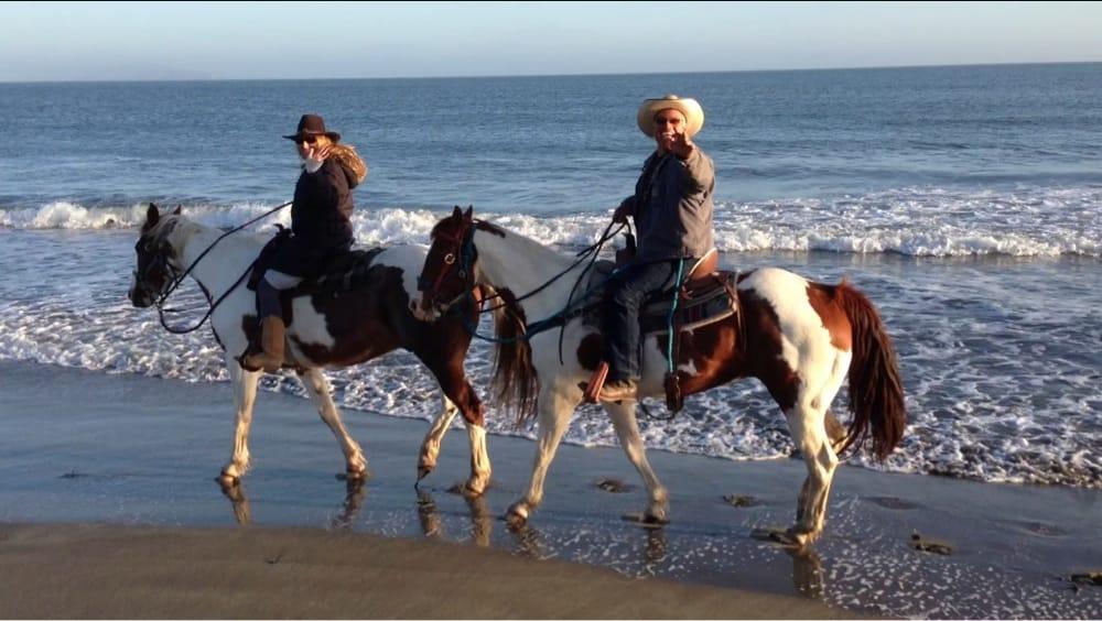 Bad boy cowboys closed 16 photos 20 reviews for Where can i go horseback riding near me