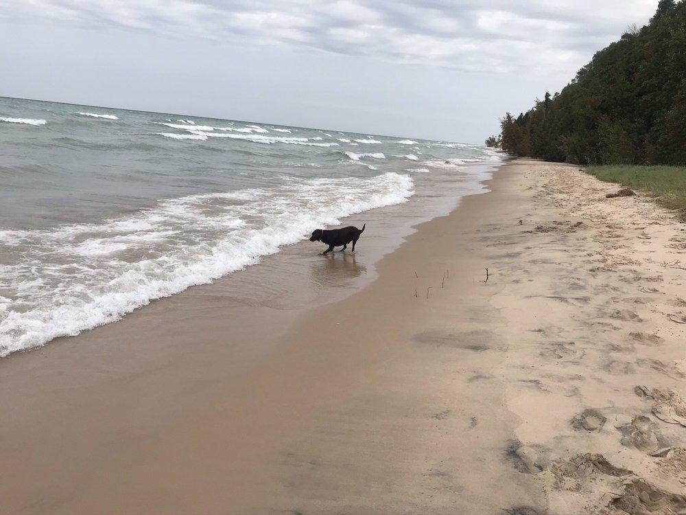 Frankfort Dog Beach: Drop Pin, Frankfort, KY