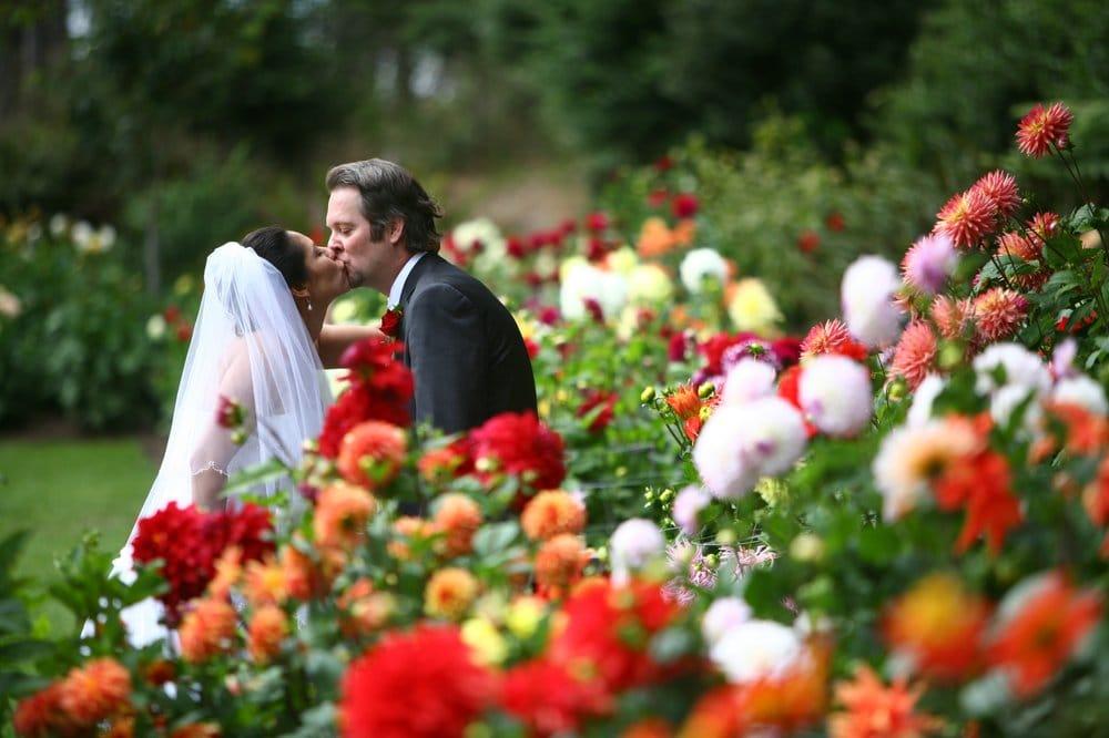 Artseed Weddings & Events: Sonoma, CA
