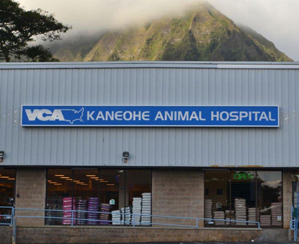 VCA Kaneohe Animal Hospital