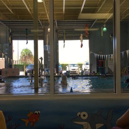 Small fish big fish swim school swimming lessons schools for Little fish swim school