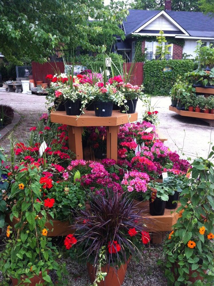 Hyams Landscaping And Garden Center : Wheaton landscape and garden center nurseries