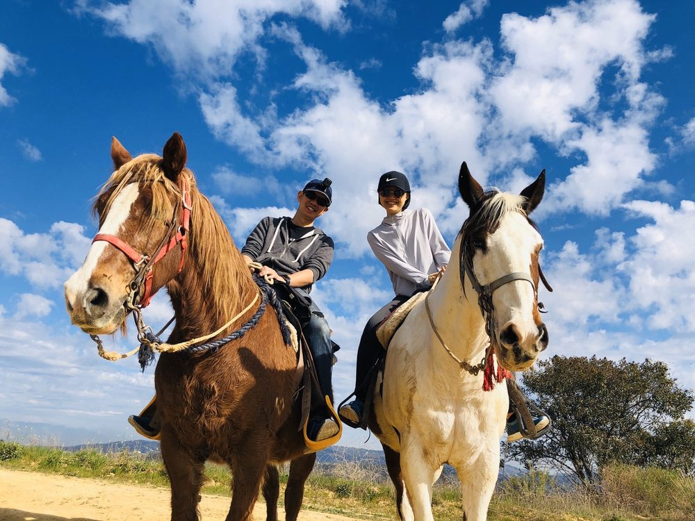 Los Angeles Horseback Riding