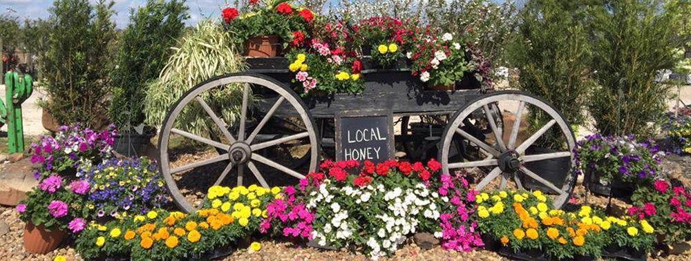 Donath Garden Works: 5019 N Highway 146, Baytown, TX