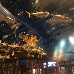 Uncle Buck's Fish Bowl & Grill - 61 Photos & 50 Reviews - American (Traditional) - 1 Bass Pro Dr ...