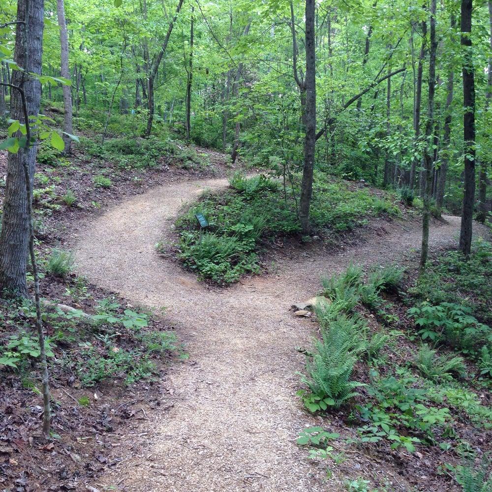 Atlanta Botanical Garden Storza Woods: Perimeter Walking Trails