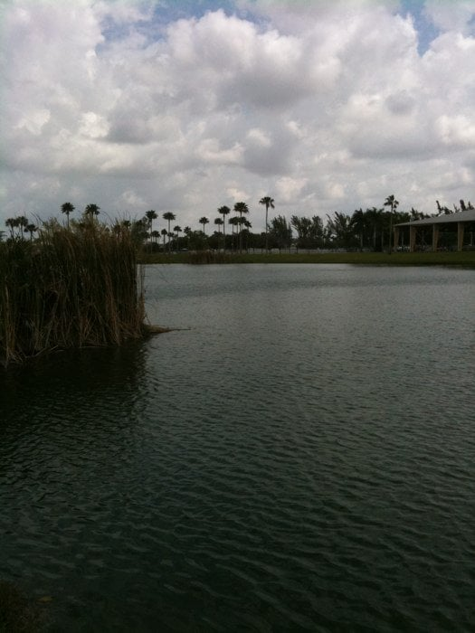 Lake By The Equestrian Center Yelp