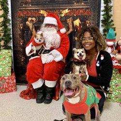 Petsmart Christmas Eve Hours.Petsmart New 13 Photos 19 Reviews Pet Stores 3364 Princess