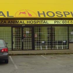 Sunshine Plaza Animal Hospital 14 Reviews Veterinarians