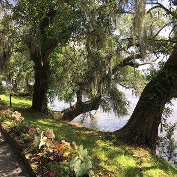Magnolia Plantation Gardens 872 Photos 290 Reviews Botanical Gardens 3550 Ashley River