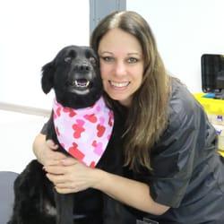 Dog Grooming Academy Of Northwest Indiana Pet Groomers 2849 Hwy