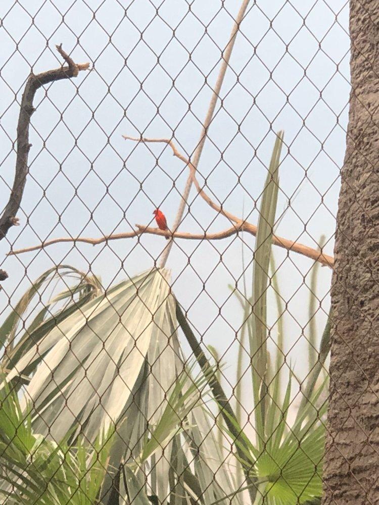 Bronx Zoo Butterfly Garden: 2300 Southern Blvd, Bronx, NY
