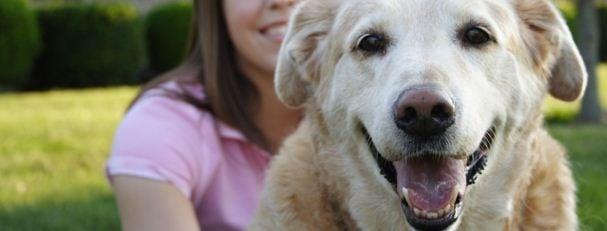 Lucy's Dream Pet Sitting: Franklinton, NC