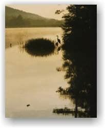 Photo of Tuscarora State Park: Barnesville, PA
