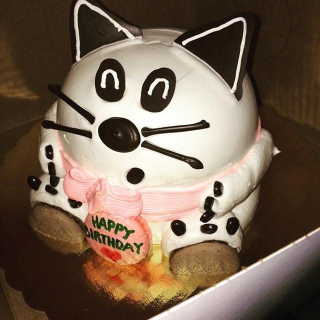 Yum Cake Pastries