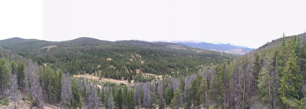 Gold Run Trail: 952 Gold Run Rd, Breckenridge, CO
