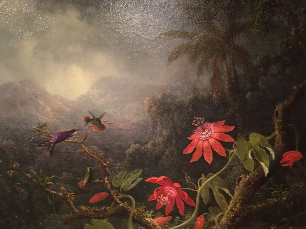 Passion Flowers With Three Hummingbirds 1875 By Martin