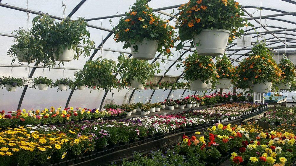 Cedar Post Farm Market West: 147 Rte 70, Lakehurst, NJ