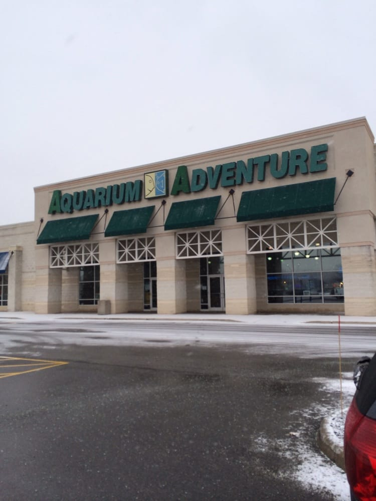aquarium adventure 30 reviews pet stores 3632 w