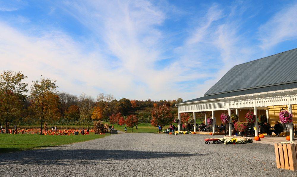 DuBois Farms: 209 Perkinsville Rd, Highland, NY