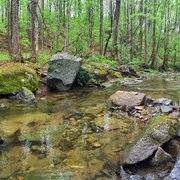 Susquehanna state park 63 photos 18 reviews hiking for Susquehanna state park cabins